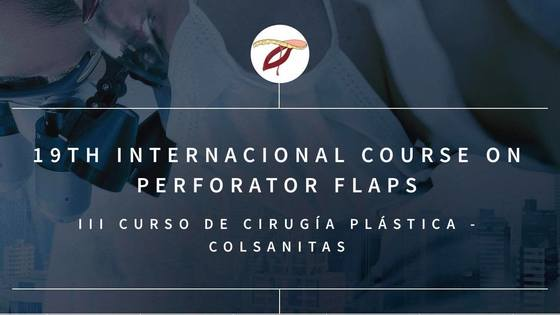 19th international course on perforator flaps bogota colombia 210 l